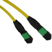 10m 9/125 Standard MTP Fiber Patch Cable