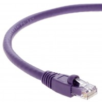 1Ft Cat6A UTP Ethernet Network Booted Cable Purple